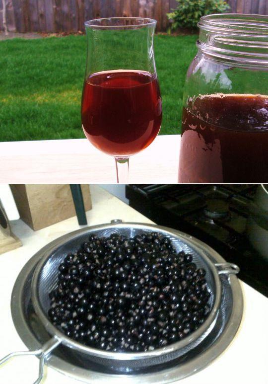 Вино из сока чёрной смородины в домашних  953