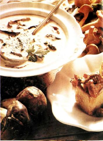Белые грибы в сливочном соусе
