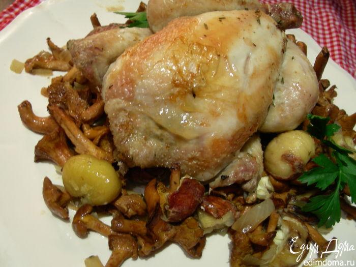 Блюда с лесными грибами рецепты с фото