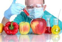 Понимание генетически модифицированных продуктов питания